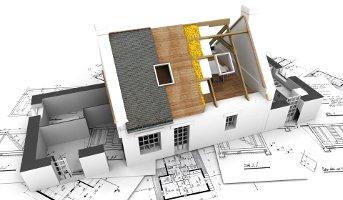 Budowa i remont domów
